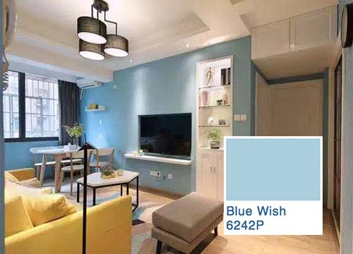 蓝房子2.png